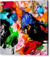 Colorful Expression 13 Acrylic Print