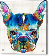 Colorful French Bulldog Dog Art By Sharon Cummings Acrylic Print