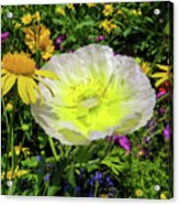 Colorful Garden Acrylic Print