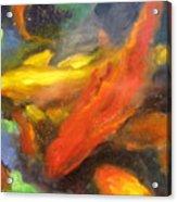Colorful Koi Acrylic Print