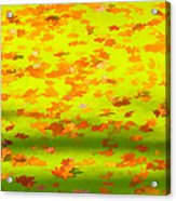 Colorful Leaves On Canal Acrylic Print