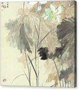 Colorful Lotus Acrylic Print