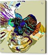 Colorful Manderin Fish Acrylic Print