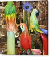 Colorful Parrots Acrylic Print