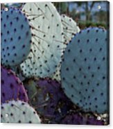 Colorful Parts Acrylic Print