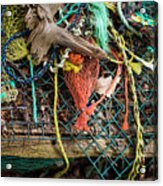 Colorful Pile 3 Acrylic Print