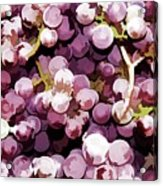 Colorful Pink Tasty Grapes In The Basket Acrylic Print