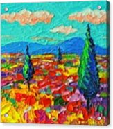 Colorful Poppies Field Abstract Landscape Impressionist Palette Knife Painting By Ana Maria Edulescu Acrylic Print
