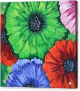 Colorful Poppy Lime Acrylic Print