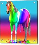 Colorful Rainbow Paint Horse Acrylic Print