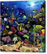 Colorful Reef Acrylic Print