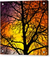 Colorful Silhouette Acrylic Print