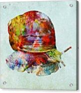 Colorful Snail Art  Acrylic Print