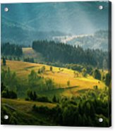 Colorful Summer Landscape In The Carpathian Mountains. Ukraine,  Acrylic Print