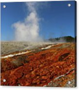 Colorful Thermal Area  Acrylic Print