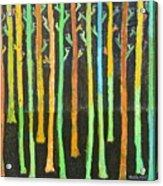 Colorful Trees Acrylic Print