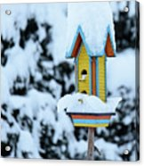 Colorful Wooden Birdhouse In The Snow Acrylic Print
