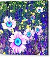Colormax 2 Acrylic Print