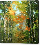 Colors Of Early Fall  Acrylic Print