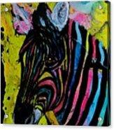 Colors Of Peace Acrylic Print