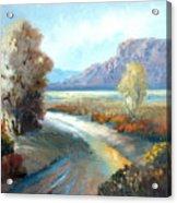 Colors Of The Desert Acrylic Print