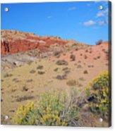 Colors Of The Utah Desert Acrylic Print
