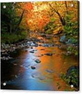 Colors On A Stream Acrylic Print