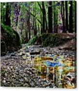 Colors On The Creek Acrylic Print