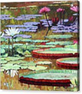 Colors on the Lily Pond Acrylic Print