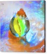 Colour Splash Acrylic Print