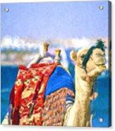 Colourful Camel Acrylic Print