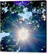 Colourful  Sunburst Acrylic Print
