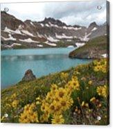 Columbine Lake And Alpine Sunflower Landscape Acrylic Print