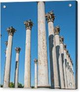 Column Row Acrylic Print