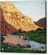 Comanche Gold Acrylic Print