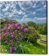 Come To The Craggy Acrylic Print