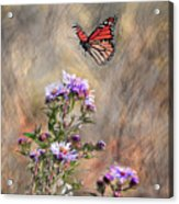 Comeing In For A Landing Acrylic Print