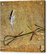Coming Home To Mother Nature Zen Acrylic Print