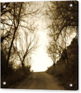 Coming Up The Drive 3 Acrylic Print