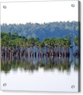 Compass Lake Acrylic Print by Peter  McIntosh