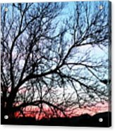 Completion  Acrylic Print