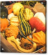 Composition Of Various Gourds In A Basket With Vignetting Acrylic Print