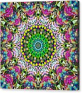 Concentric Colors Abstract Acrylic Print