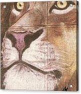 Concrete Lion Acrylic Print