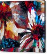 Cone Flower Fantasia I Acrylic Print