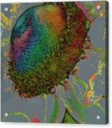 Confetti Flower Acrylic Print