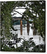 Congaree River Glimpse Acrylic Print