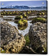 Conglomerate Boulders, Green Point, Nl Acrylic Print