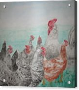 Congregation Acrylic Print