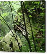 Conkle's Hollow Stone Arch Acrylic Print